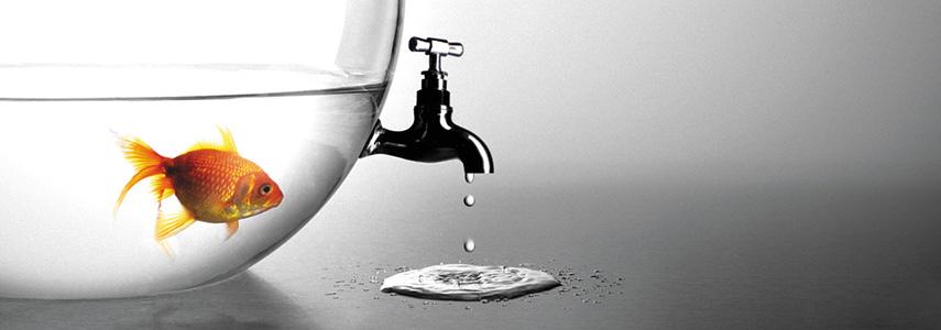 Sử dụng bồn cầu Inax thế nào để tiết kiệm nước?