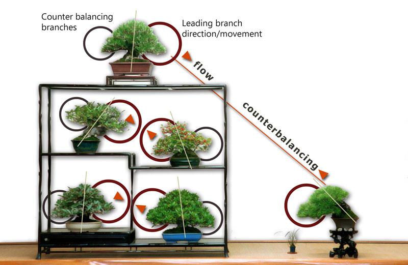 Kệ để cây bonsai hình vuông 4 trụ mảnh