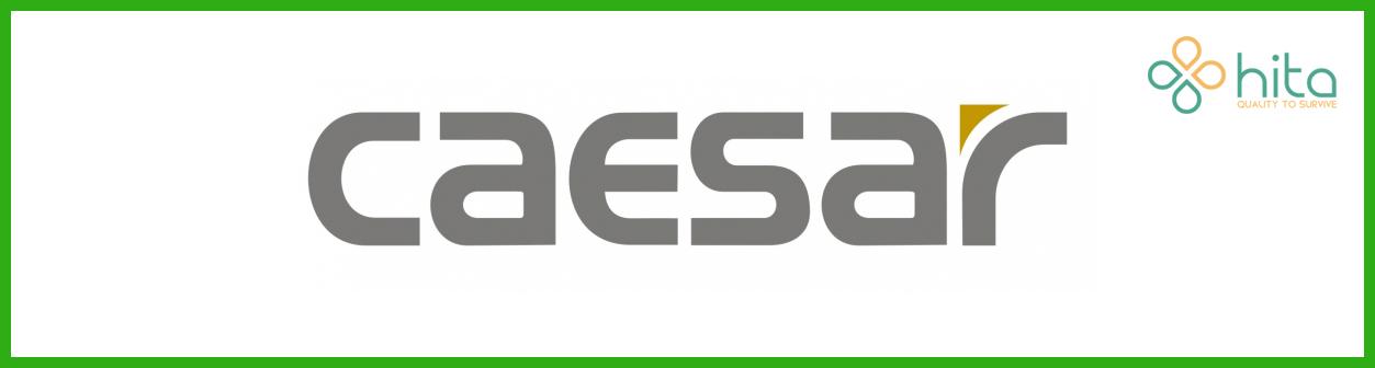 các hãng thiết bị vệ sinh caesar logo
