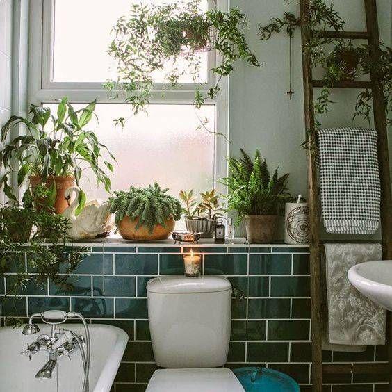 Xu hướng thiết kế nhà vệ sinh nhiều cây xanh